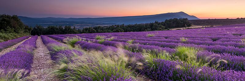 schöne bilder kaufen panoramas – schöne landschaft bilder kaufen   stimmungs foto