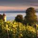 ALTES SCHLOSS – MEERSBURG - Schöne Landschaft Bilder kaufen | Stimmungs Foto als Fineart by Stefan Somogyi Fotografie