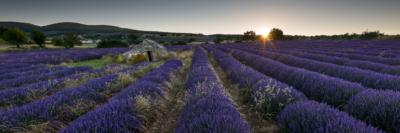 FIRST LIGHT ON THE BORIE - Schöne Landschaft Bilder kaufen | Stimmungs Foto als Fineart by Stefan Somogyi Fotografie