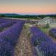 LES BORIES – FERRASSIERES - Schöne Landschaft Bilder kaufen | Stimmungs Foto als Fineart by Stefan Somogyi Fotografie