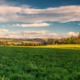 ALPSTEINBLICK - Schöne Landschaft Bilder kaufen | Stimmungs Foto als Fineart by Stefan Somogyi Fotografie