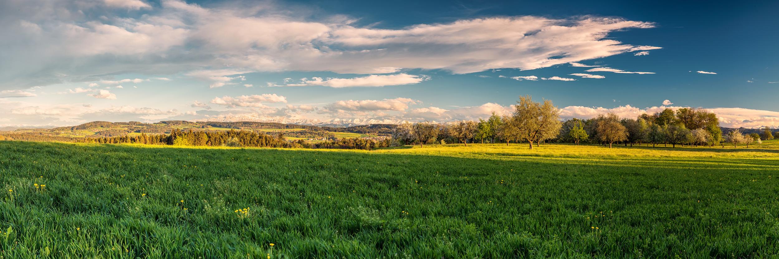 ALPSTEINBLICK - Schöne Landschaft Bilder kaufen   Stimmungs Foto als Fineart by Stefan Somogyi Fotografie
