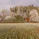 FROSTIGER WALD - Schöne Landschaft Bilder kaufen | Stimmungs Foto als Fineart by Stefan Somogyi Fotografie