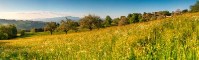 GREUTENSBERGER FRÜHLING - Schöne Landschaft Bilder kaufen | Stimmungs Foto als Fineart by Stefan Somogyi Fotografie
