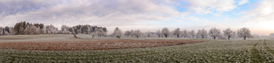 MAISFELD - Schöne Landschaft Bilder kaufen | Stimmungs Foto als Fineart by Stefan Somogyi Fotografie