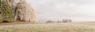WALD & WIESEN - Schöne Landschaft Bilder kaufen | Stimmungs Foto als Fineart by Stefan Somogyi Fotografie