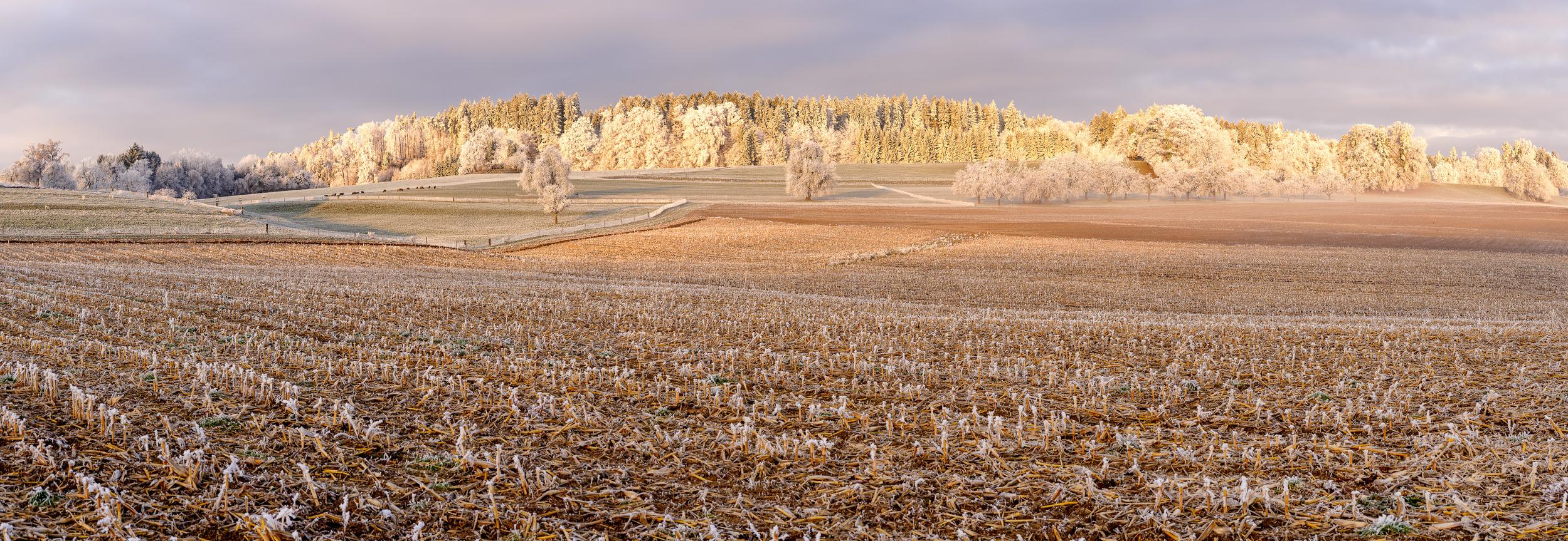 WINTERMORGEN - Schöne Landschaft Bilder kaufen | Stimmungs Foto als Fineart by Stefan Somogyi Fotografie