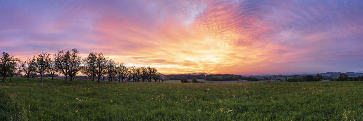 MORNING COLORS WOLFIKON - Schöne Landschaft Bilder kaufen | Stimmungs Foto als Fineart by Stefan Somogyi Fotografie