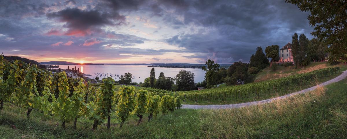 ARENENBERG SUNSET - Schöne Landschaft Bilder kaufen | Stimmungs Foto als Fineart by Stefan Somogyi Fotografie