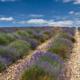 ESPACE INFINI - Schöne Landschaft Bilder kaufen | Stimmungs Foto als Fineart by Stefan Somogyi Fotografie
